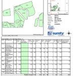 TRACT 4 SURETY SOIL MAP-page-001